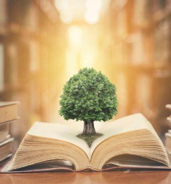 filosofia de la educacion