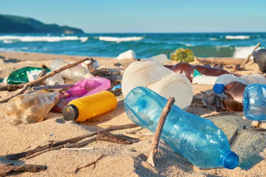 basura y ecosistema